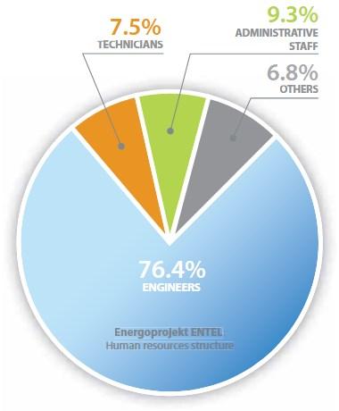 Energoprojekt ENTEL Human resources structure